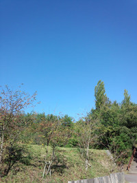 Img_20121019_135216